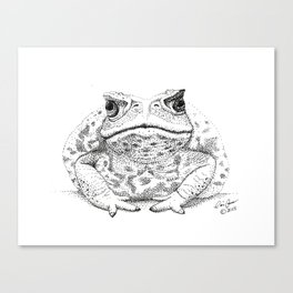 Cane Toad, Pointillism  Canvas Print