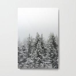 Winter Forest Fir Tree Snow III - Nature Photography Metal Print