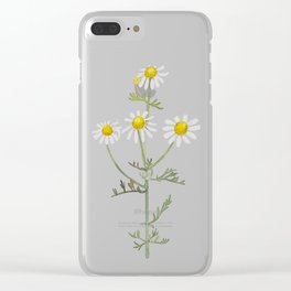 Chamomile Clear iPhone Case