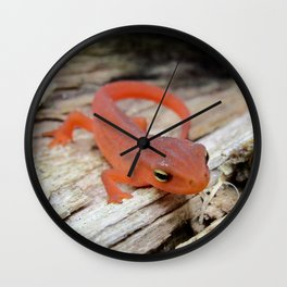 The Charismatic Newt Wall Clock