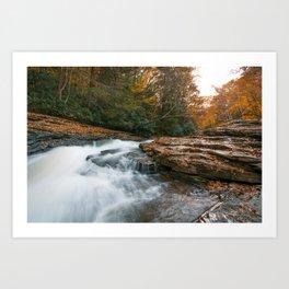 Autumn in Ohiopyle Art Print
