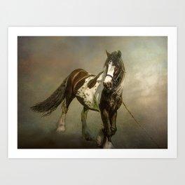 The Gypsy cob Art Print
