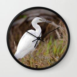 Watercolor Bird, Little Blue Heron 03, Merchants Millpond, North Carolina, Swamp Fisher Wall Clock