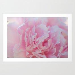 Pink Peony - Flower Photography Art Print