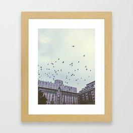Birds of the City Framed Art Print