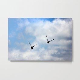 Opreys in Flight Metal Print