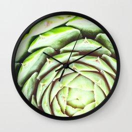 Beautiful Sempervivum succulent plant shapes macro close-up in selective focus Wall Clock