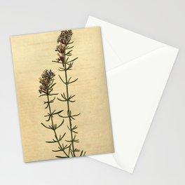 Flower 2299 hyssopus orientalis Oriental Hyssop10 Stationery Cards