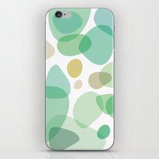 Sea Pebbles iPhone & iPod Skin