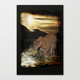 Night of the Cougar Canvas Print