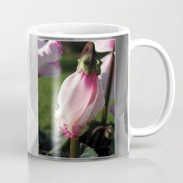 Cyclamen named Metis Victoria Coffee Mug