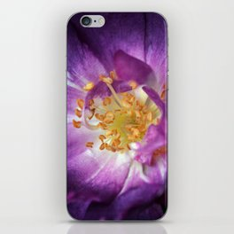If roses load the air... iPhone Skin
