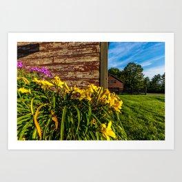 Yellow Flowers - Red Barn Art Print