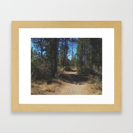 Benham Falls Trail Framed Art Print