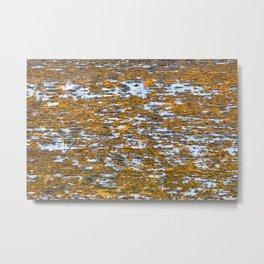 Moss on wood Textures 12 Metal Print