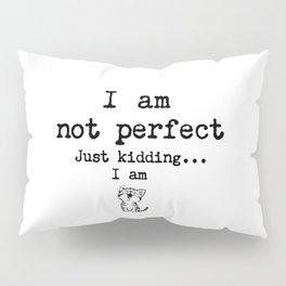 I am not perfect. Just kidding... I am. Pillow Sham