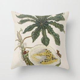 Papaya - Maria Sibylla Merian Throw Pillow
