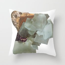 Cryptic Throw Pillow