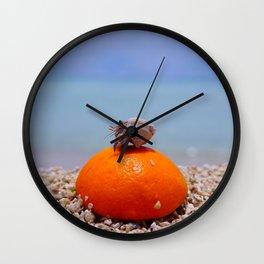 orange and hermit crab Wall Clock