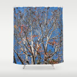 Trees 4 Dayz Shower Curtain