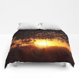 Sunset Silhouettes | Beautiful Nature Comforters