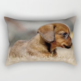 Bridgit 7 Rectangular Pillow