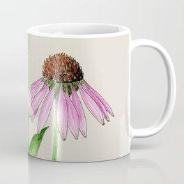 Botanical illustration of Echinacea Coffee Mug