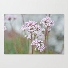 Tender Spring Flowers Canvas Print