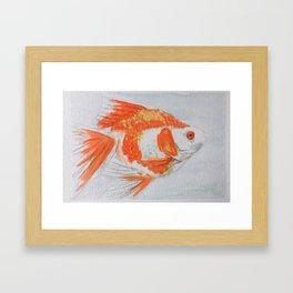 watercolor fish 2 Framed Art Print