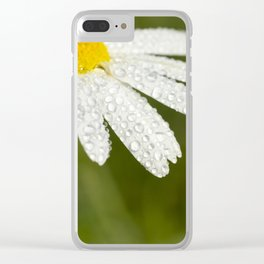 camomile flower close-up Clear iPhone Case