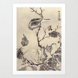 Bird and Frog Art Print