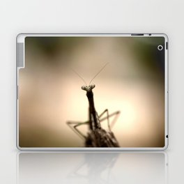 Praying mantis Laptop & iPad Skin