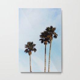 Palms California Metal Print