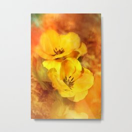 Yellow and Orange Hybrid Tulips Metal Print