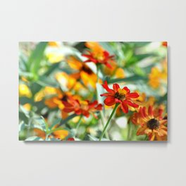 SUMMER VISTA Metal Print