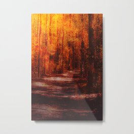 Inferno pathway Metal Print