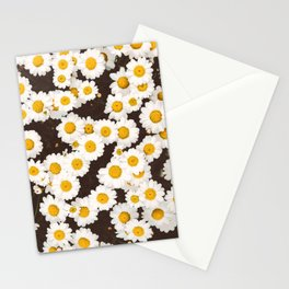 Daisy Daisies Stationery Cards
