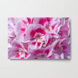 Red And White Flora Metal Print