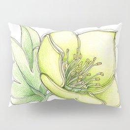 Green Hellebore Pillow Sham