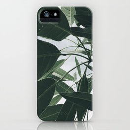 Natural Background 13 iPhone Case