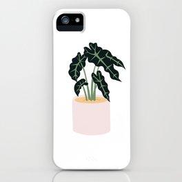 Elephent Ear Plant iPhone Case