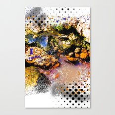 I Heart Rocks Canvas Print