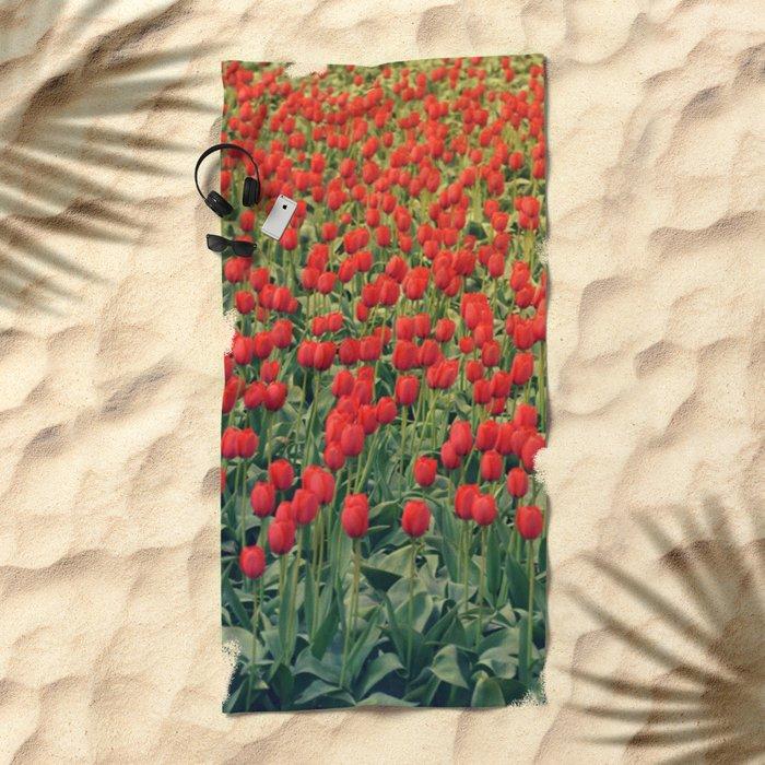 Tulips field #2 Beach Towel