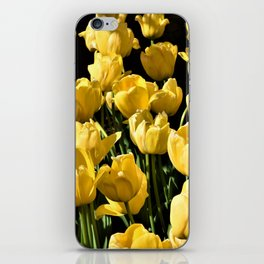 Lovely Yellow Tulips iPhone Skin