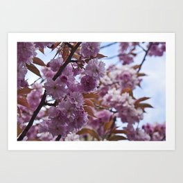 Spring is Near II Art Print