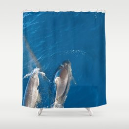 Dolphins with rainbow Shower Curtain