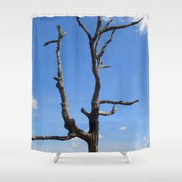 Dead Tree against a sky with clouds Shower Curtain