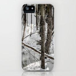 Winter Woods & Creek iPhone Case
