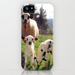 Ewe and Twin Spring Lambs iPhone Case