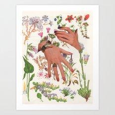 155.  Art Print